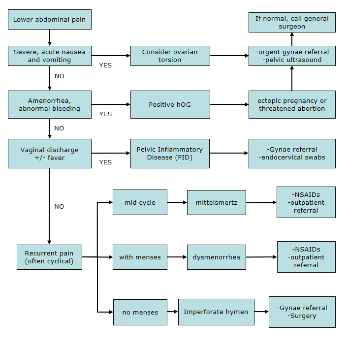 clinical practice guidelines : lower abdominal pain flowchart, Skeleton