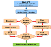 ICU Card Flow Chart image