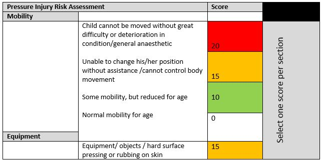 pressure injury risk assessment scoring