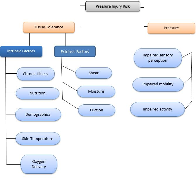 pressure injury flow chart