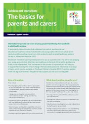 Transition resource image - the basics for parents and carers