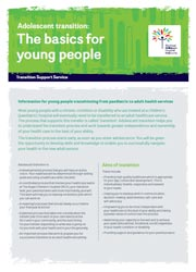Transition resource image - the basics for young people